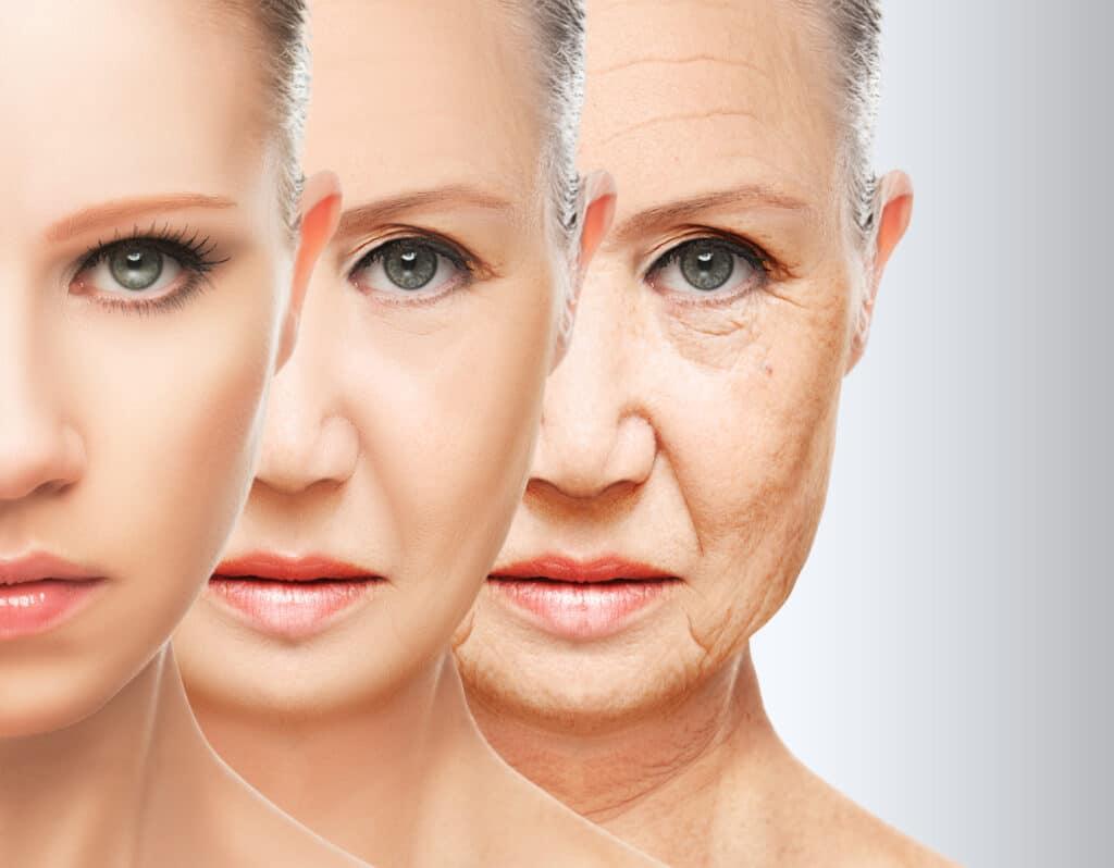 invecchiamento-cellulare